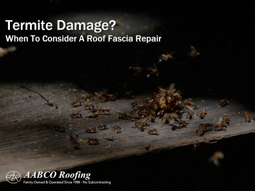 Roof Fascia Repair
